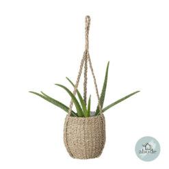 Hanging Seagrass Flowerpot
