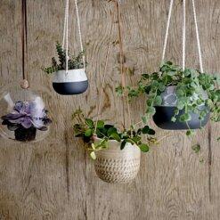 Stoneware Hanging Flower Pot